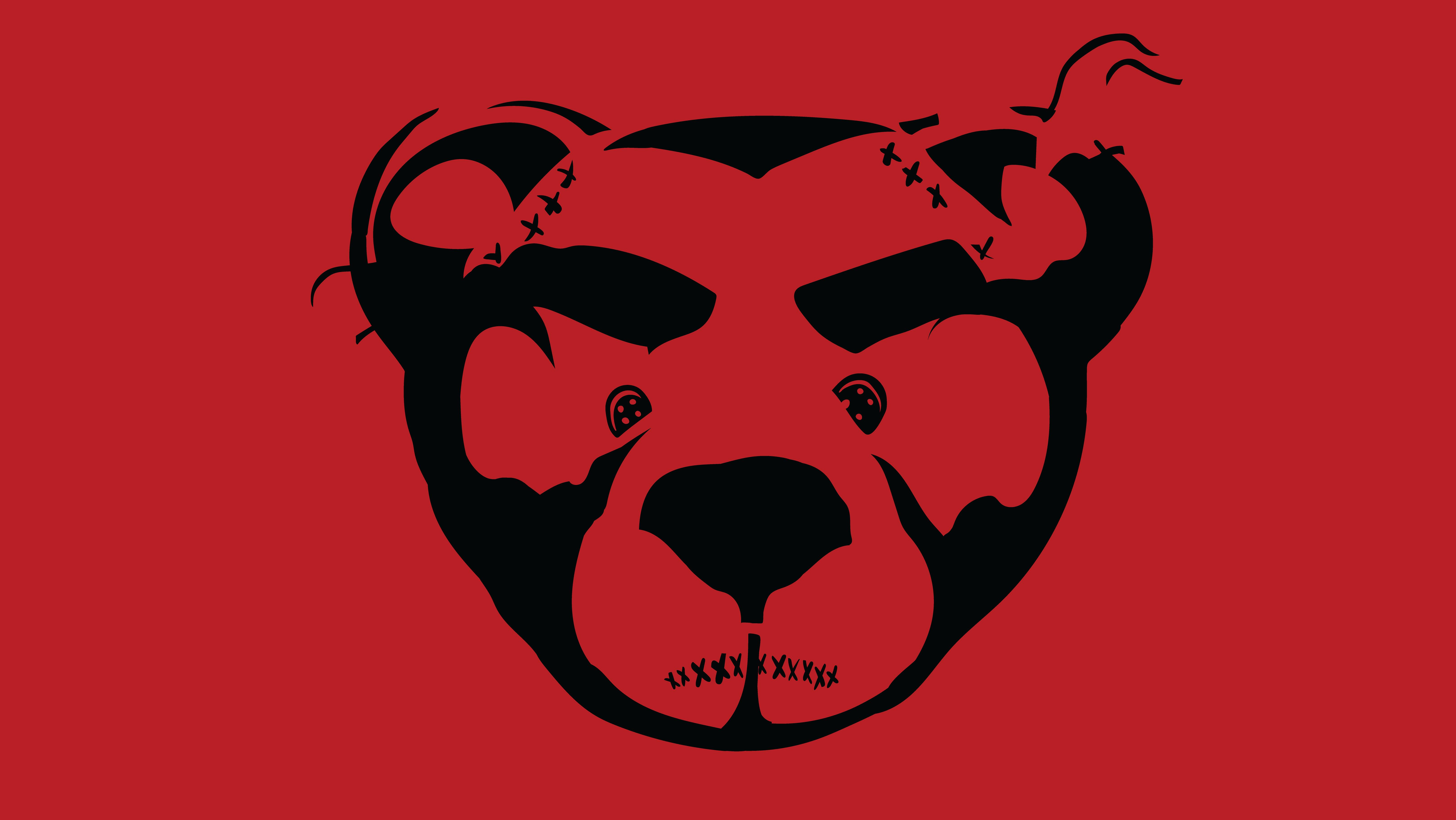 Angry Bear logo 16:9